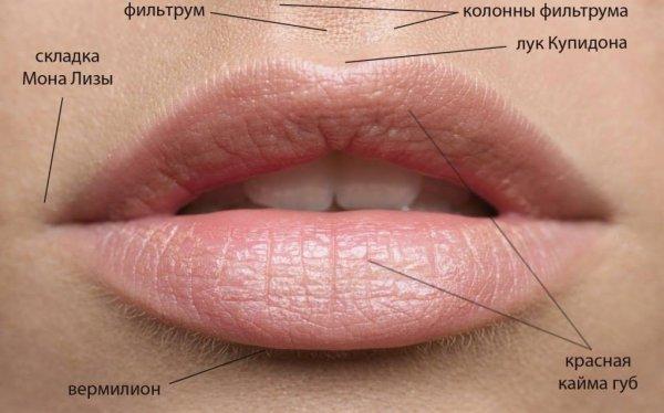 Коррекция объема и формы губ